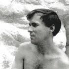 1966 D2